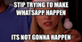 stip trying to make whatsapp happen