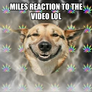 miles reaction to the video lol