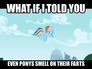 My Little Pony Fart