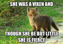 Fierce baby vixen